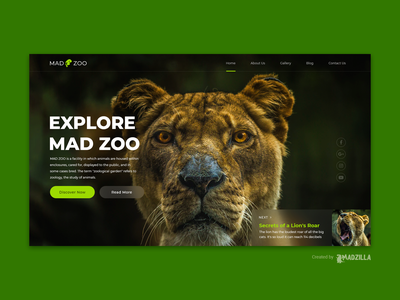 Zoo Design Inspiration landing page website designer illustration branding website design website concept website design
