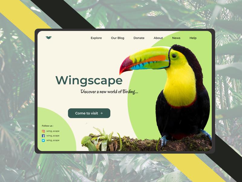 Worldscape india ux vector branding photoshop landing page animation illustrator ui design bird