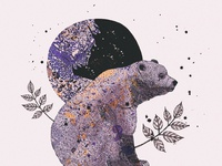 Bear & Moon Illustration