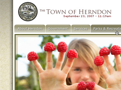 Town of Herndon, VA ui design