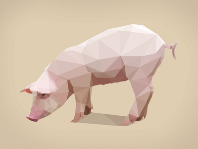 Poly Pig low poly isometric graphic poly