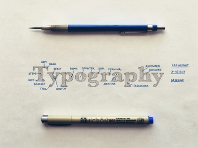 Hand Lettered Type Anatomy lettering hand lettering typography anatomy