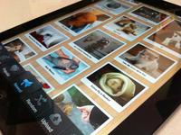 Cutest Paw iPad Version