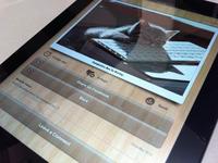 Cutest Paw iPad Single Page