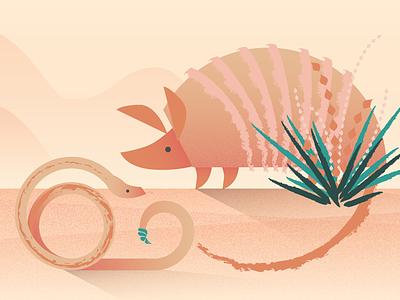 Desert desert snake armadillo illustration