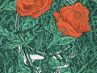 SYF Illustration