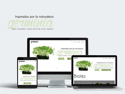 Germinia's Website redesign ux ui webdevelopment webdesign