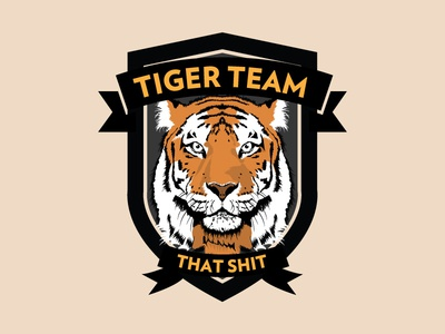 Tiger Team BГјcher