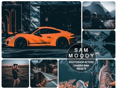 Moody Sam Mobile and Desktop Lr presets actions photography lifestyle presets instagram presets mobile presets blogger presets