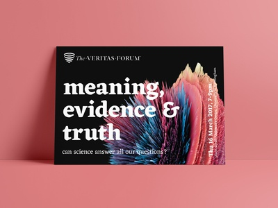 meaning, evidence & truth
