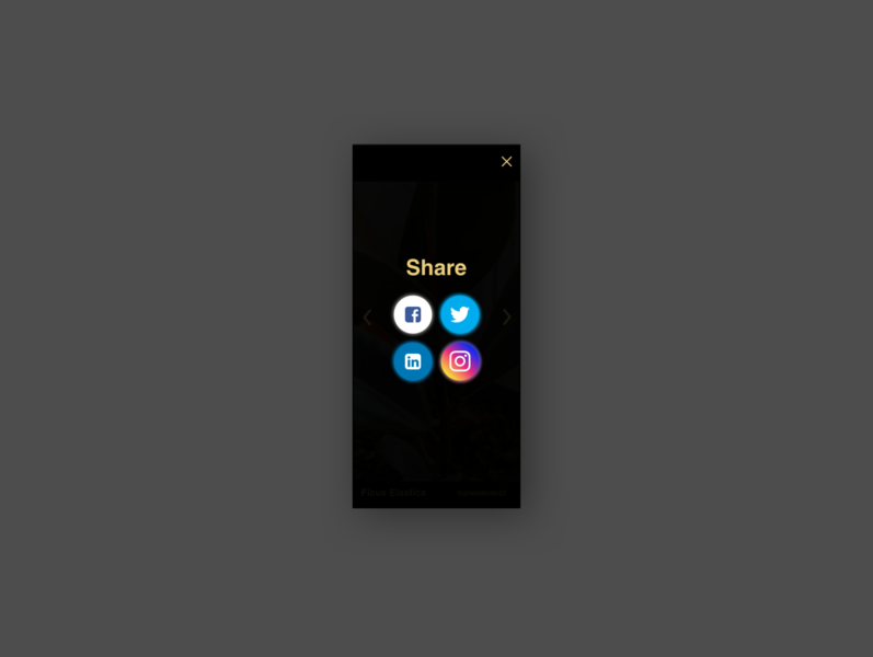 Daily UI Challenge #10 dailyui010 app ui typography design dailyui