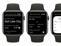 Air Lookout: Apple WatchOS App