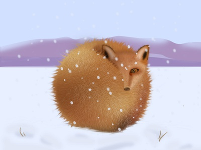 A fox in the snow graphic,art