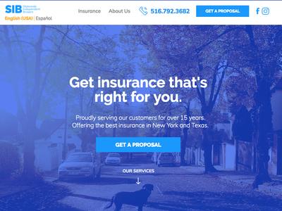 Statewide Insurance Website branding design ui website