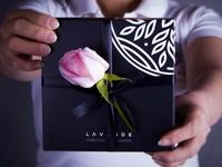 Levande Flower Shop brand identity
