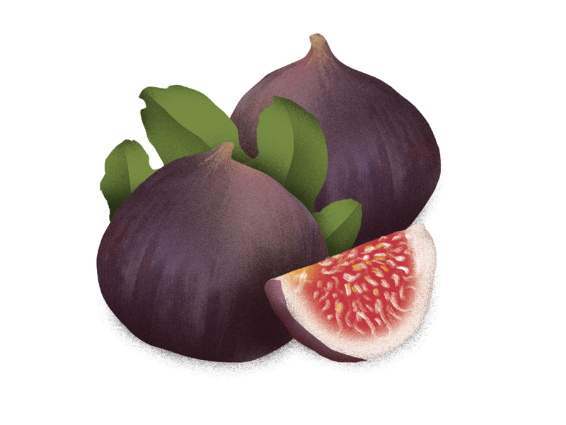 Figs patpascual