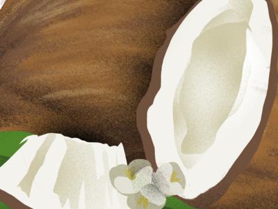 Coconuto
