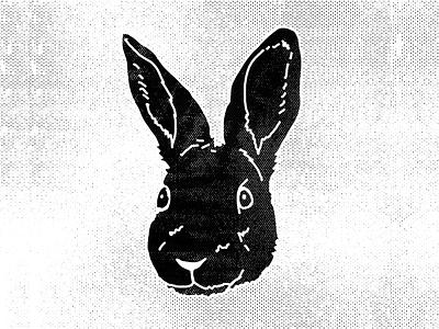 Hare vintage texture rough sketch wacom warmup illustration rabbit hire wild
