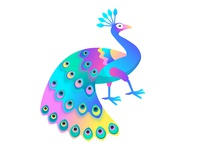 Peacock Gradient