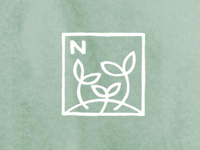 Nourish sprouts