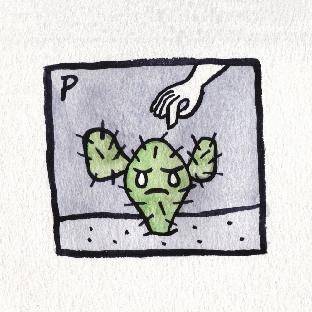 25 prickly