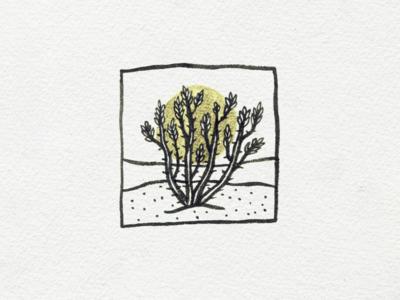 Vine halo ink illustration succulent desert vine ocotillo