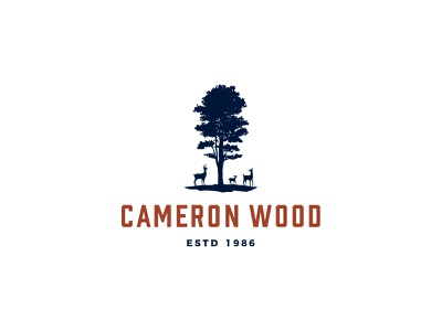 Cameron Wood - Logo Explore icon illustration type typography logo design