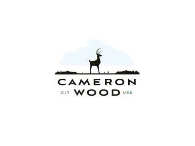 Cameron Wood - Logo Explore v3 branding north carolina type typography logo design