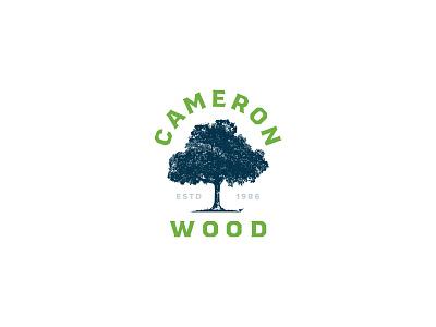 Cameron Wood - Logo Explore v1 north carolina nc illustration branding typography logo design