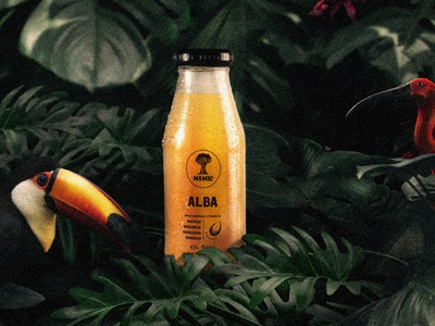 Mambe juices photography selva branding packaging identity design