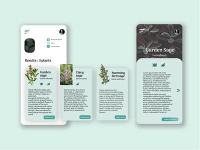 Sylvanus - Know Nature - view 2 webdesign forest design app design app application design application ui application designers encyclopedia cooking medecine health plants