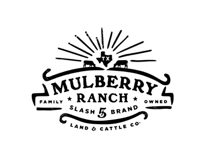 Mulberry Ranch beef ranch texas cattle typography identity custom vector old branding retro classic illustration logo vintage