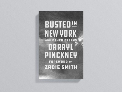 Busted in New York Cover