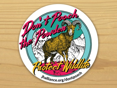 Don't Poach the Powder 90s skiing vector jackson hole graphic design sticker design sticker illustration
