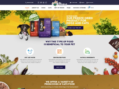 The natural Bowl - HomePage Design