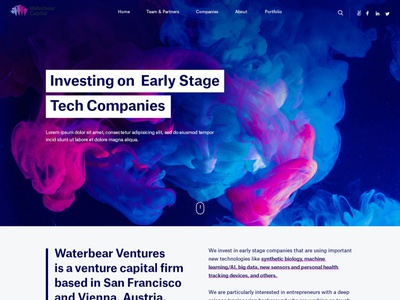 Waterbear Capital art wordpress webdesigner graphicdesign uidesign userinterface webdesign esolzwebdesign design ui illustration corporate