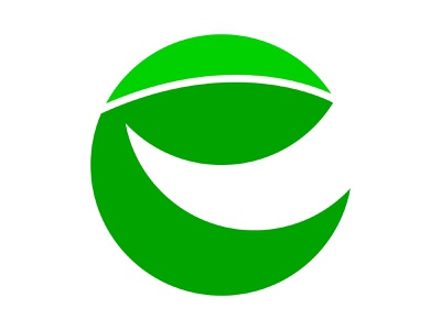 E Leaf xler8brain symbol identity branding mark design letter e e monogram e mark e logo e leaf