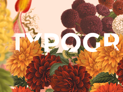 Typography is beauty typography pattern plants