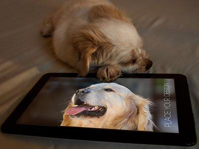 Pet & Tablet Mock Up