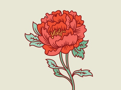 Peony peony flower floral illustration flora nature modify ink