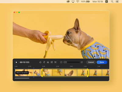 Simple video editor dog banana yellow minimal user interface desktop app desktop design application interface video editor product design