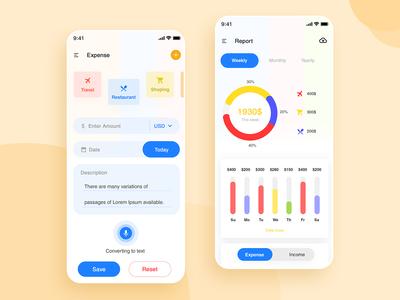 Expense App - Home & Report App Screen