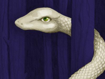 Giant Snake in-progress snake graphite drawing art