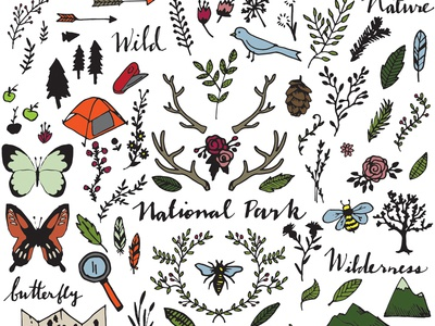 National Park Drawings Clipart nature explore wilderness drawing clipart bird bee butterfly camping antlers national park clip art