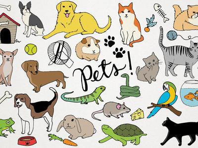 Pets Clipart Illustrations cute vector hand drawn resource illustrations dogs cats animals pets clip art clipart creative market