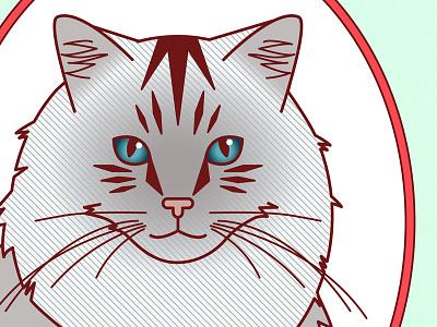 Ferocious • Regal • Fluffy etsy posters illustration vector cats prints art print ragdoll grey animals cute cat