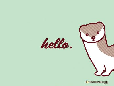 Free stoat wallpaper iphone desktop pattern freebie free wallpaper funny hello weasel ermine animal cute stoat
