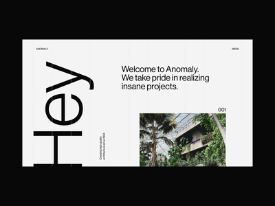 Anomaly Home interface interaction type typography minimal clean motion website animation video ui
