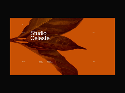 Studio Celeste Home Animation website animation flat minimal web app type typography vector branding ui ux clean design