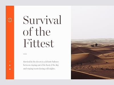 Survival of the Fittest graphic design survival magazine clean munich desert type typography